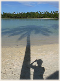 Me, myself, I and the coconut tree ;-)